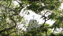 Christ statue visible through tree branches