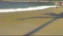 Slow motion of the shadow of a palm tree and a family at Rio's Red Beach.
