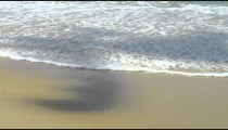 Slow motion of waves washing up on Rio's Red beach over the shadow of a palm tree.