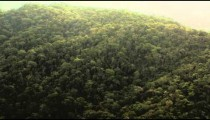 Aerial pan of mountain forest