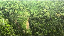Aerial tracking footage of mountain forest